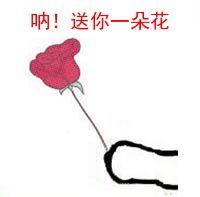 送你一朵花.jpg